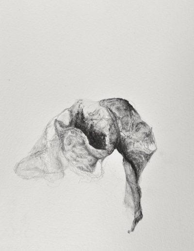 Pascale Simonet | Dessins | Corps intranquilles