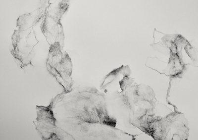 Pascale Simonet | Grands formats et détails | Ceux qui passent
