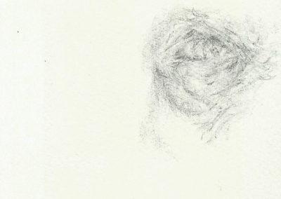 Pascale Simonet | Dessins | Paupières
